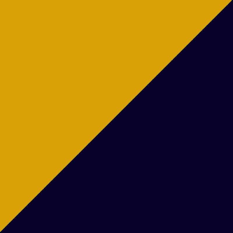 Mustard/Navy